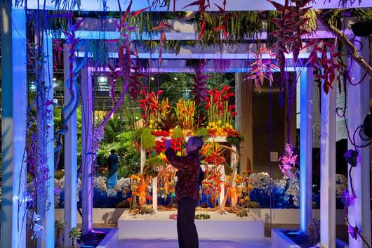 PHS Flower show